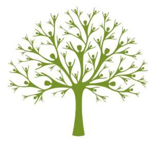 Gezamenlijk ontstaat een herinneringsboom