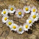 Bloemen of rouwboeket bij afscheid