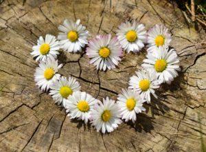 Bloemen bij afscheid
